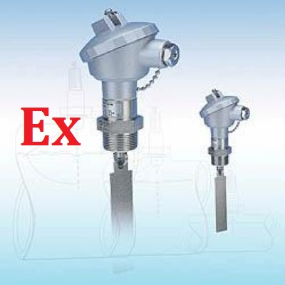 ATEX Bidirectional Paddle Flow Switches