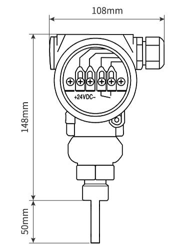 The drawing of Ex thermal flow switch